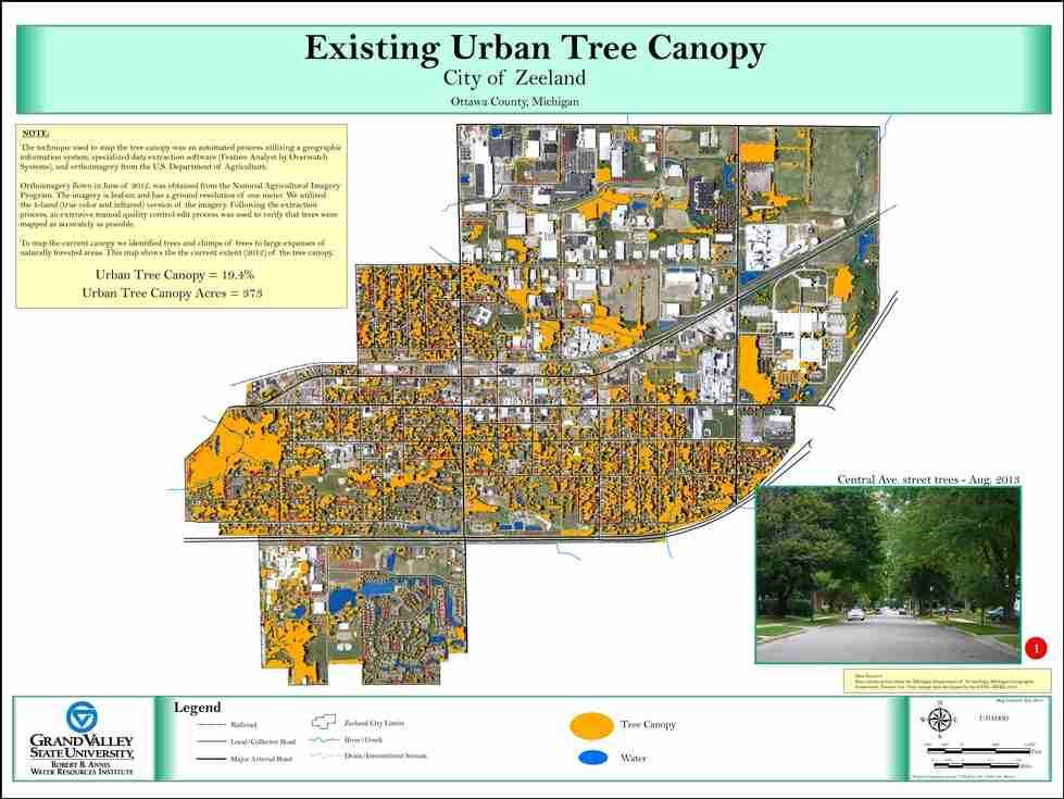 Existing Urban Tree Canopy